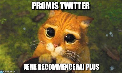 Meme twitter