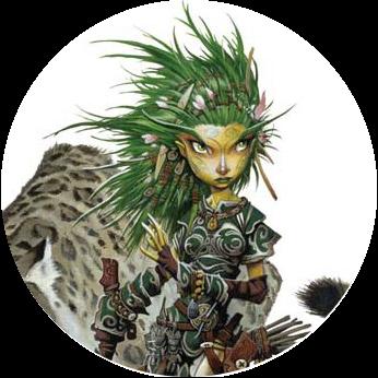 Graphiste Webdesigner Druide RPG Web